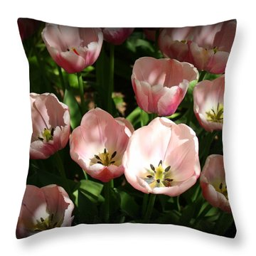 Lovely Pink Tulips Throw Pillow by Dora Sofia Caputo Photographic Art and Design