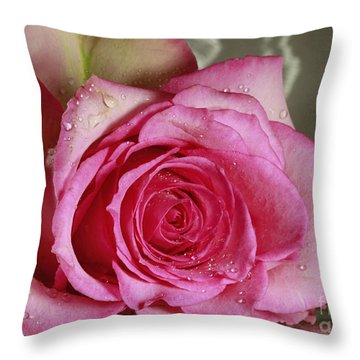 Loves Tender Moments Throw Pillow by Inspired Nature Photography Fine Art Photography