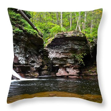 Lower Adams Falls Throw Pillow by Frozen in Time Fine Art Photography