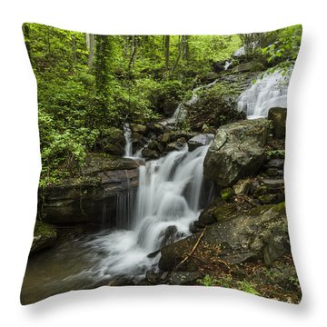 Lower Amicalola Falls Throw Pillow by Debra and Dave Vanderlaan