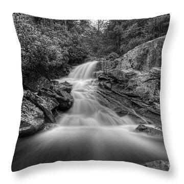 Lower Falls On Big Run River  Throw Pillow by Dan Friend