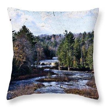 Lower Tahquamenon Falls Michigan Throw Pillow by Evie Carrier