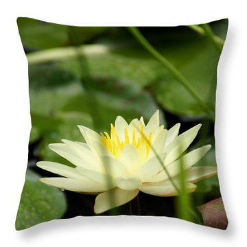 Lust Throw Pillow by Kim Pate