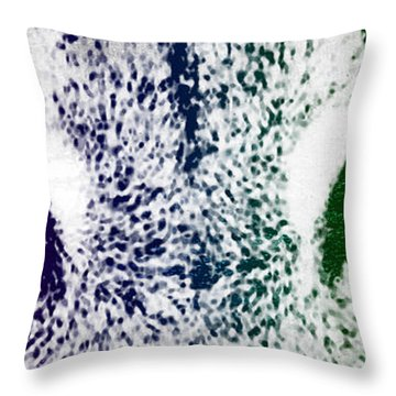 Lynx Eyes Throw Pillow by Aged Pixel