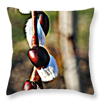 Macro Hdr Throw Pillow by Frozen in Time Fine Art Photography