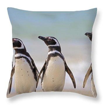 Magellanic Penguins Carcass Island Throw Pillow by Heike Odermatt