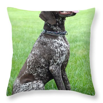 Maggie Throw Pillow by Lisa Phillips