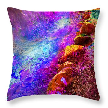 Magic Pathway II Throw Pillow by William Beuther