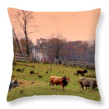 Magical Mornings Throw Pillow by Karen Wiles