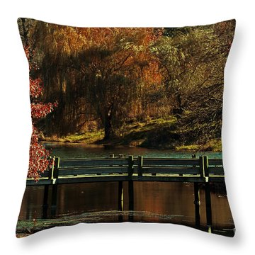 Mahoney State Park Throw Pillow by Elizabeth Winter