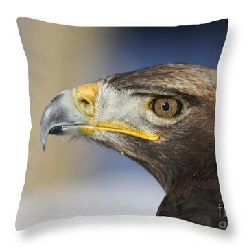 Majestic Golden Eagle Throw Pillow by Inspired Nature Photography Fine Art Photography