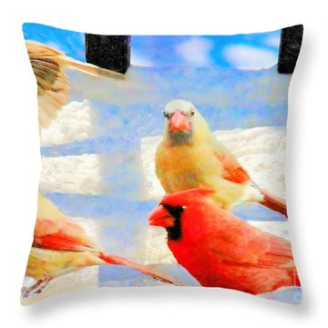 Male Cardinal With Two Females And Junco Throw Pillow by Janette Boyd