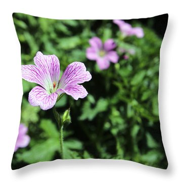 Mallow Cheeses Throw Pillow by Paul Fell
