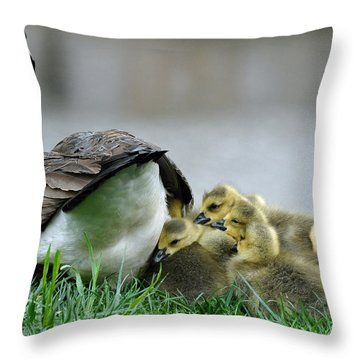 Mama And Goslings Throw Pillow by Lisa Phillips