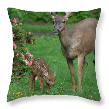 Mama Deer And Baby Bambi Throw Pillow by Kym Backland