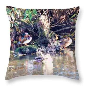 Mandarin Duck Throw Pillow by Leif Sohlman