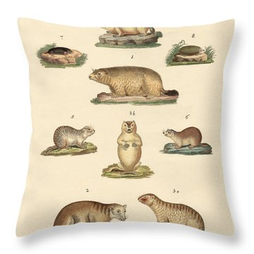 Marmots And Moles Throw Pillow by Splendid Art Prints