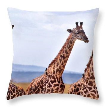 Masai Giraffe Throw Pillow by Adam Romanowicz