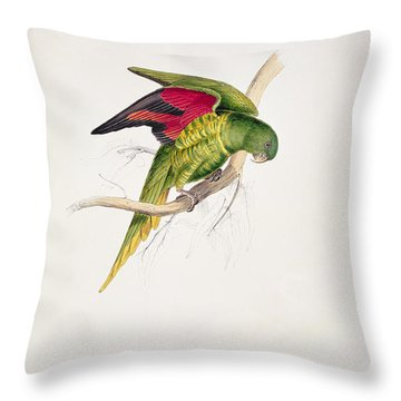 Matons Parakeet Throw Pillow by Edward Lear