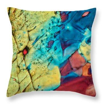 Matterhorn Throw Pillow by Tom Phillips