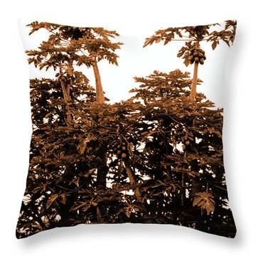 Maui Coconut Palms Throw Pillow by J D Owen
