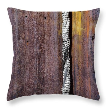 Maximum Decay  Throw Pillow by Fran Riley