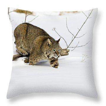 Meander Throw Pillow by Jack Milchanowski