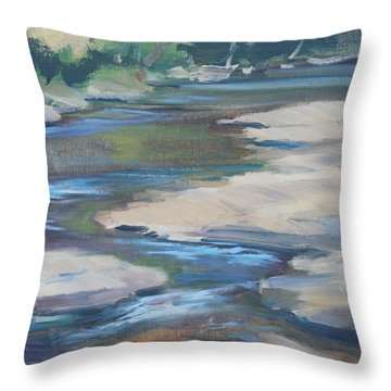 Meandering Through Time Throw Pillow by Carol  DeMumbrum