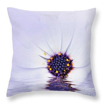 Melting Mauve Throw Pillow by Kaye Menner
