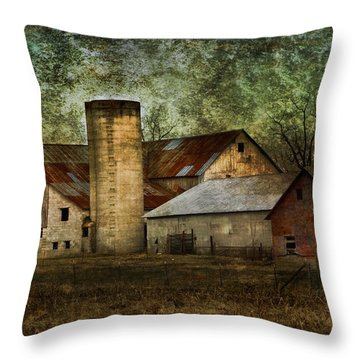 Mennonite Farm In Tennessee Usa Throw Pillow by Kathy Clark