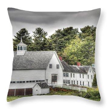 Merrucoonegan Farm Throw Pillow by Richard Bean