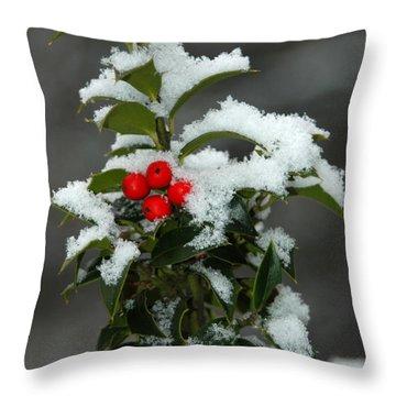 Merry Christmas Throw Pillow by Raymond Salani III