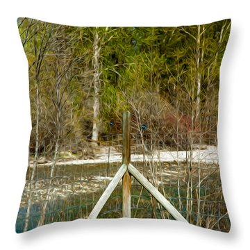 Methow River Springtime Throw Pillow by Omaste Witkowski