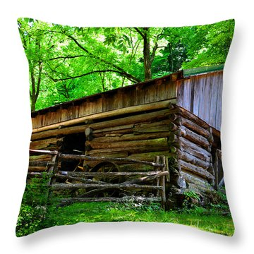 Mill House Barn Throw Pillow by David Lee Thompson
