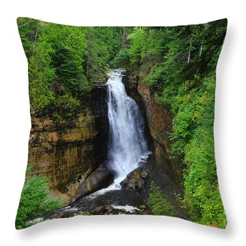 Miners Falls  2 Throw Pillow by Rachel Cohen
