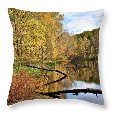 Mirror Mirror On The Floor Throw Pillow by Frozen in Time Fine Art Photography