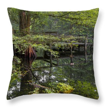 Mirror To The Soul Throw Pillow by Debra and Dave Vanderlaan