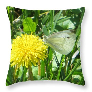 Miss Busy Butterfly Throw Pillow by Sonali Gangane