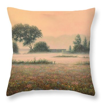Misty Morning Throw Pillow by James W Johnson