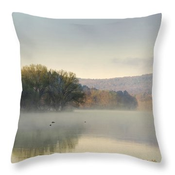 Misty Morning Sunrise Throw Pillow by Christina Rollo