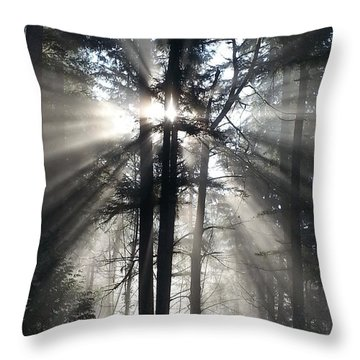 Misty Morning Sunrise Throw Pillow by Crista Forest