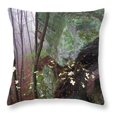 Misty Woods Throw Pillow by Thomas R Fletcher