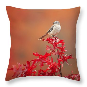 Mockingbird Autumn Square Throw Pillow by Bill Wakeley
