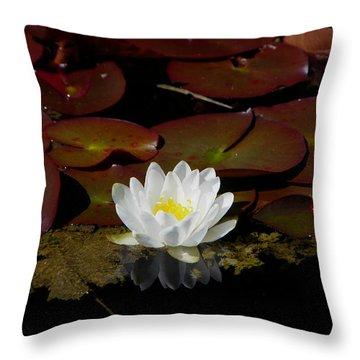 Monet Memories Throw Pillow by Marilyn Wilson