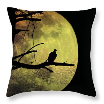 Moonlight Mile Throw Pillow by Bill Cannon