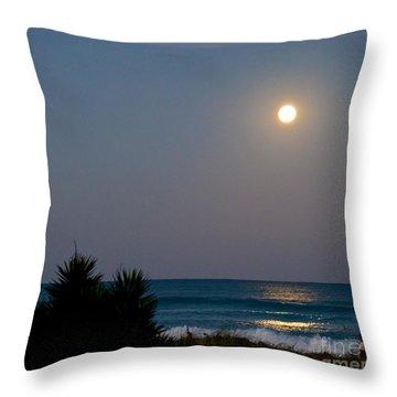 Moonlit Stroll Throw Pillow by Michelle Wiarda