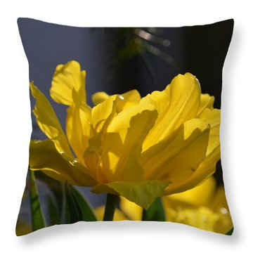 Moonlit Tulips Throw Pillow by Maria Urso