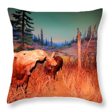 Moose ..algonkian Throw Pillow by Larry Trupp