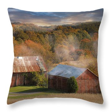 Morning Burn Throw Pillow by Fran J Scott