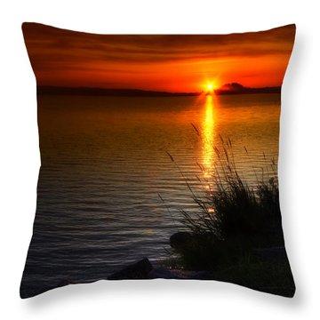 Morning By The Shore Throw Pillow by Veikko Suikkanen